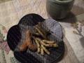 Nishikihorin_2_blog