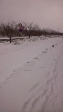 Sakata_2012_winter_450x800_3